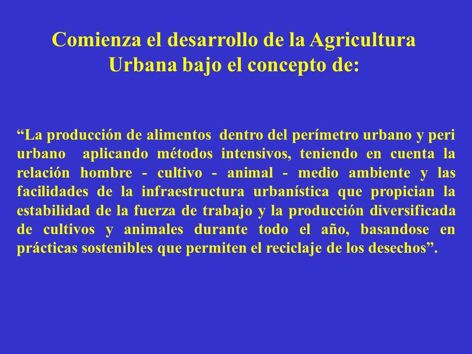 Comienza el desarrollo de la Agricultura Urbana bajo el concepto de: