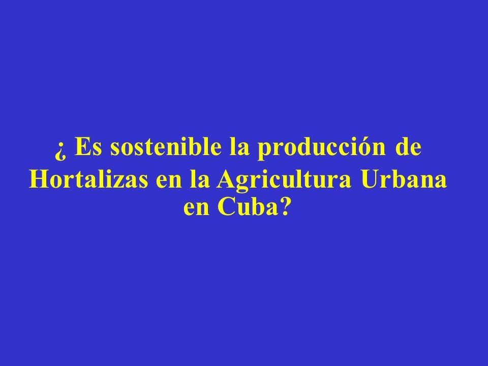¿ Es sostenible la producción de Hortalizas en la Agricultura Urbana