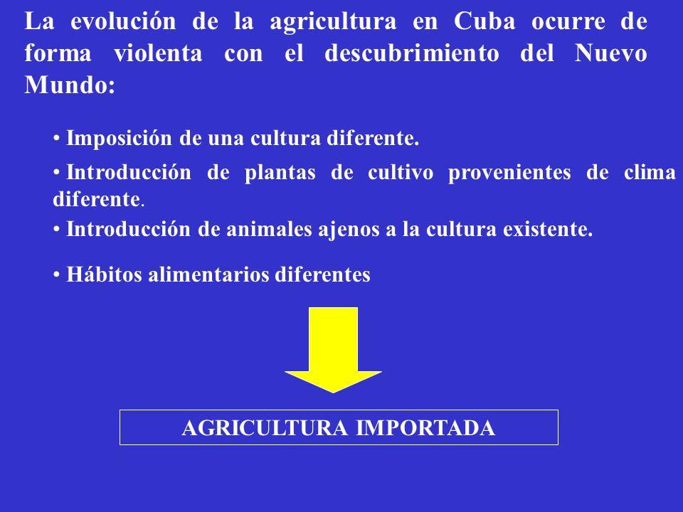 AGRICULTURA IMPORTADA