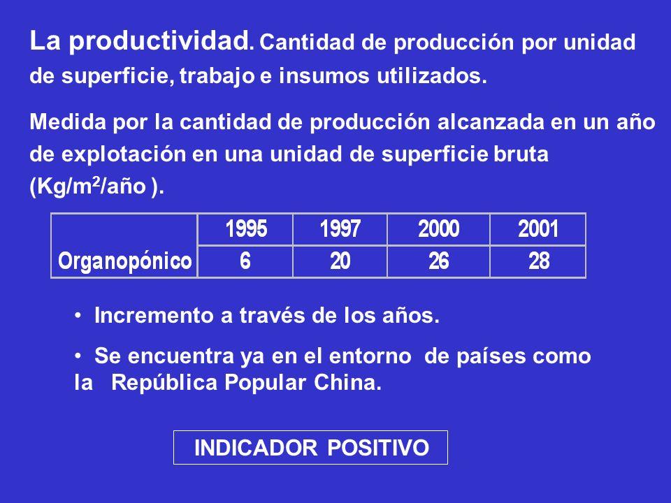 La productividad. Cantidad de producción por unidad de superficie, trabajo e insumos utilizados.