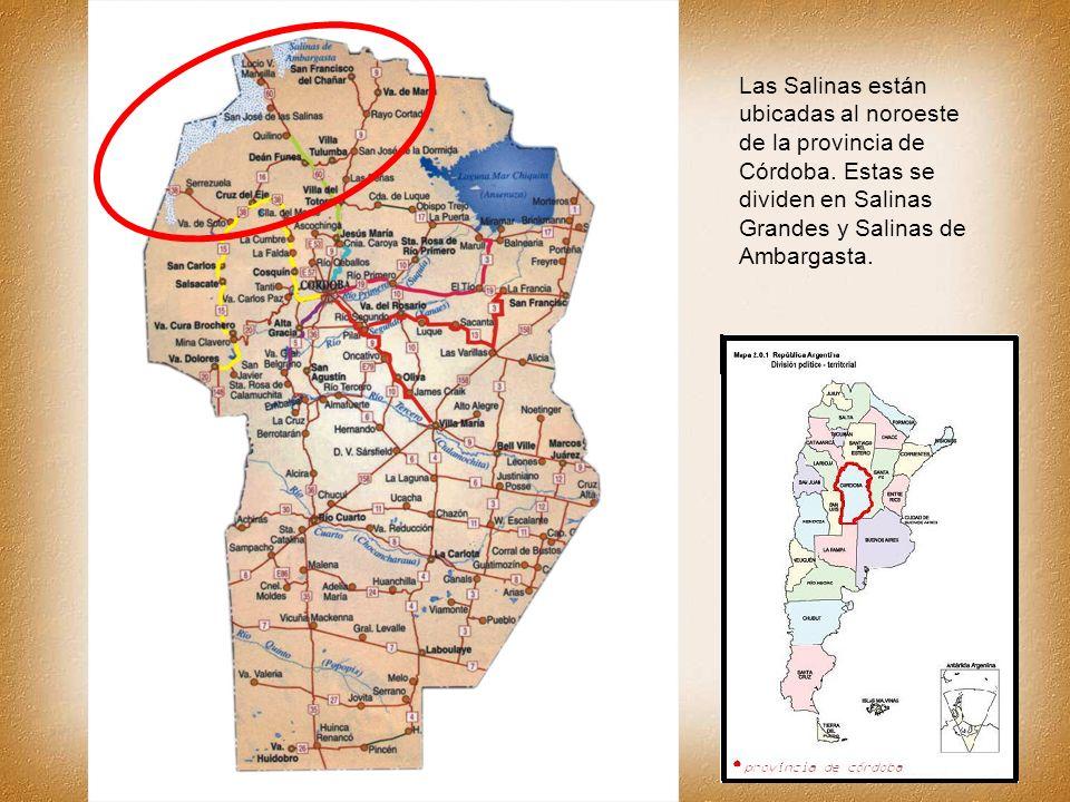 Las Salinas están ubicadas al noroeste de la provincia de Córdoba