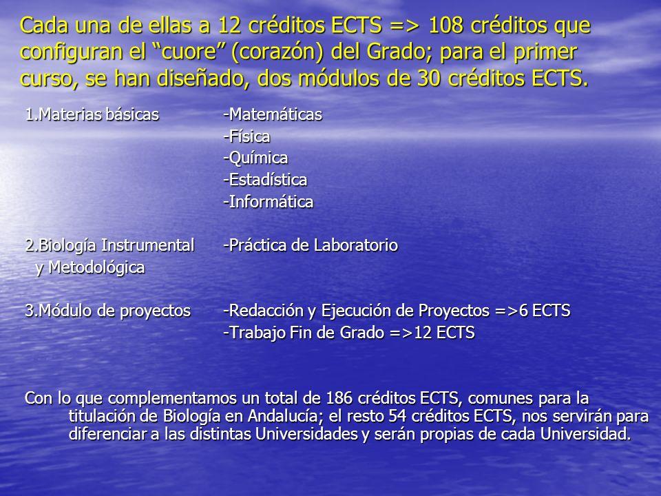 Cada una de ellas a 12 créditos ECTS => 108 créditos que configuran el cuore (corazón) del Grado; para el primer curso, se han diseñado, dos módulos de 30 créditos ECTS.