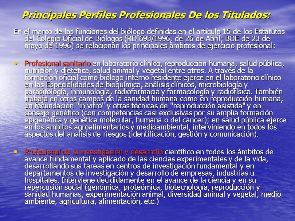 Principales Perfiles Profesionales De los Titulados:
