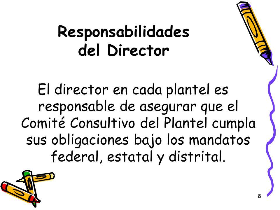 Responsabilidades del Director