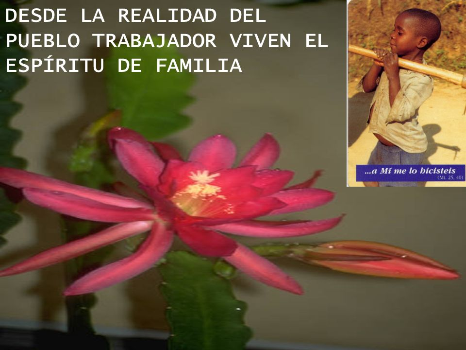 DESDE LA REALIDAD DEL PUEBLO TRABAJADOR VIVEN EL ESPÍRITU DE FAMILIA