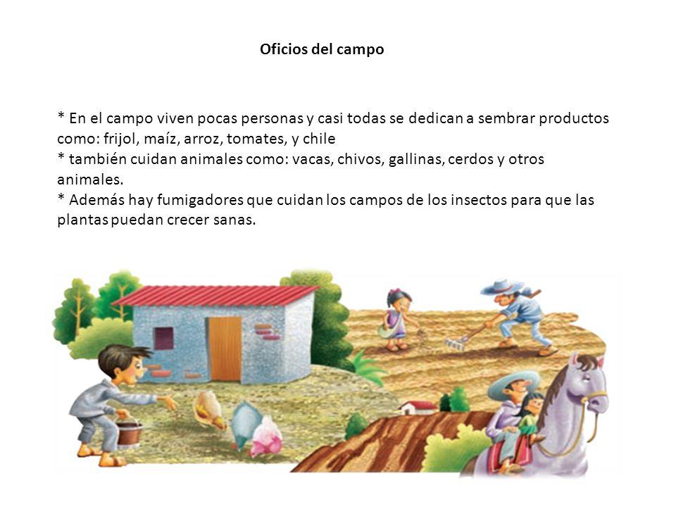 Oficios del campo * En el campo viven pocas personas y casi todas se dedican a sembrar productos como: frijol, maíz, arroz, tomates, y chile.