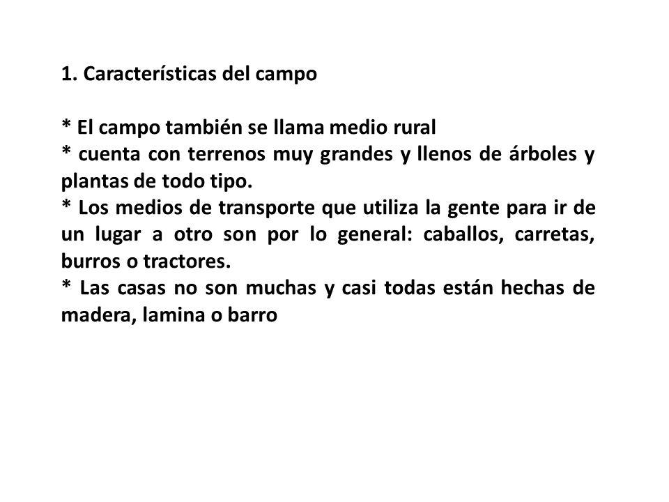 1. Características del campo