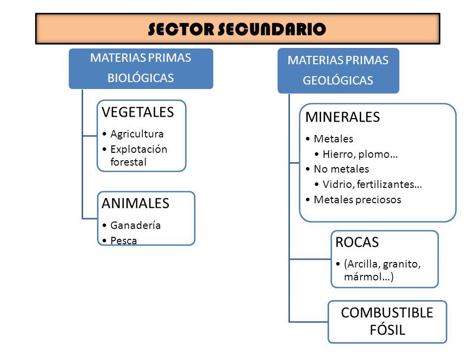 SECTOR SECUNDARIO VEGETALES MINERALES ANIMALES ROCAS COMBUSTIBLE FÓSIL