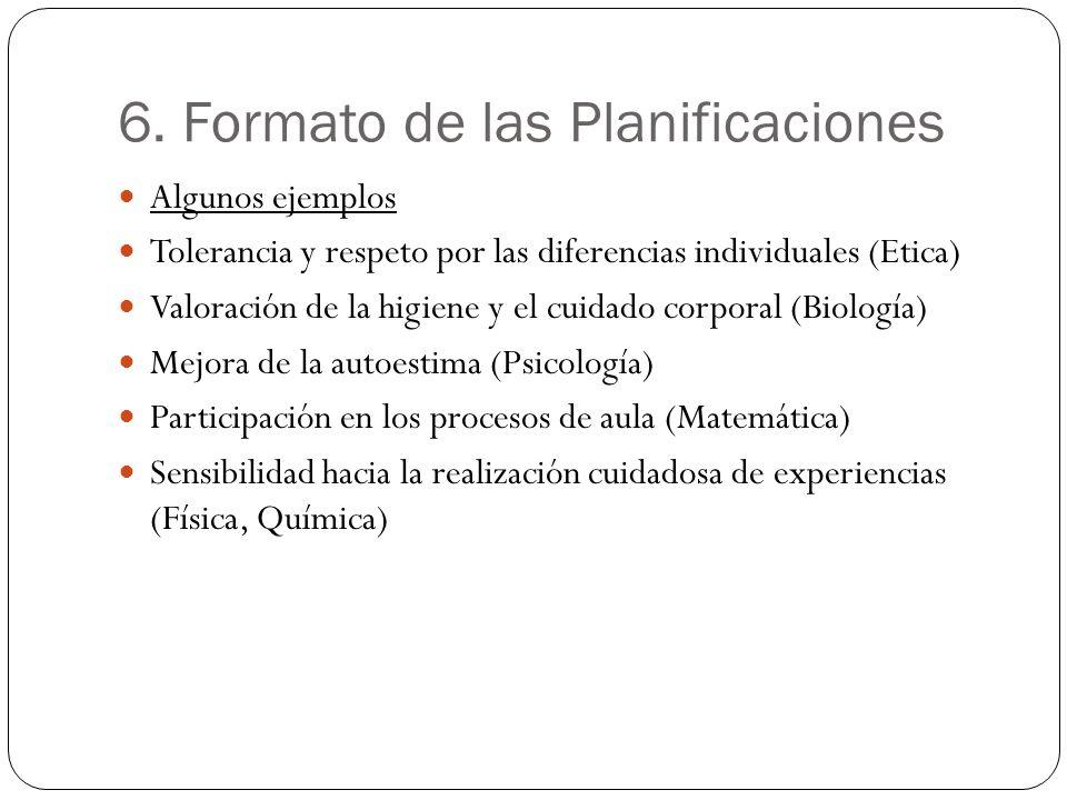6. Formato de las Planificaciones