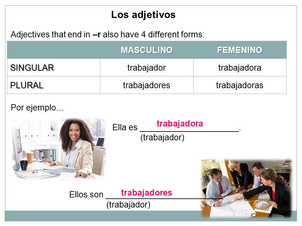 Los adjetivos Adjectives that end in –r also have 4 different forms: