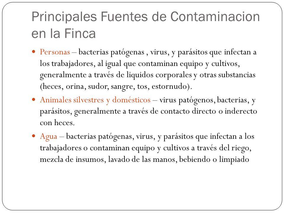 Principales Fuentes de Contaminacion en la Finca