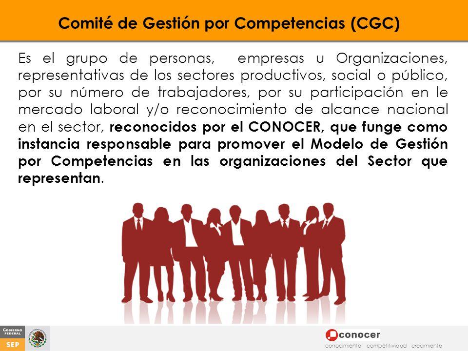Comité de Gestión por Competencias (CGC)