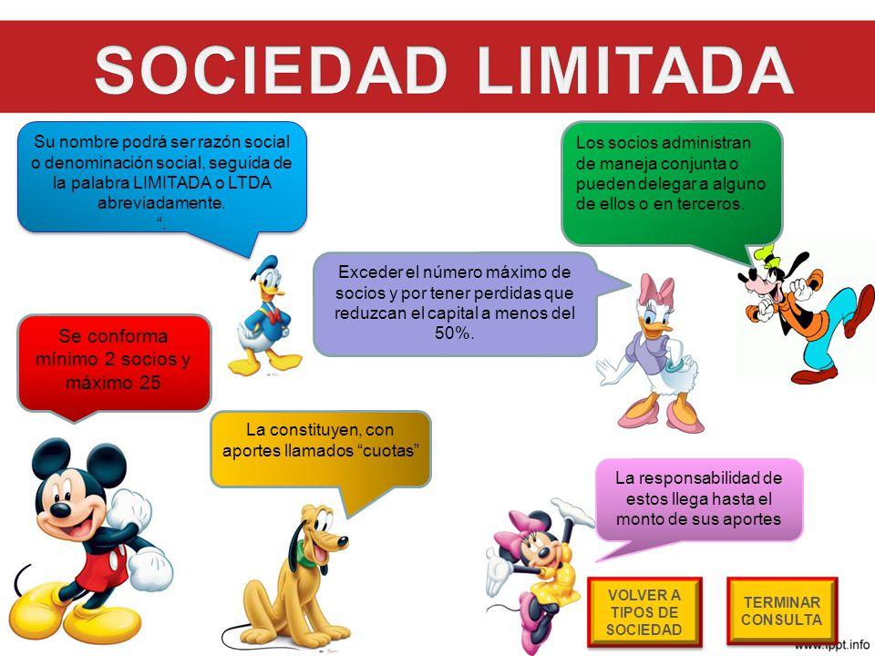 VOLVER A TIPOS DE SOCIEDAD