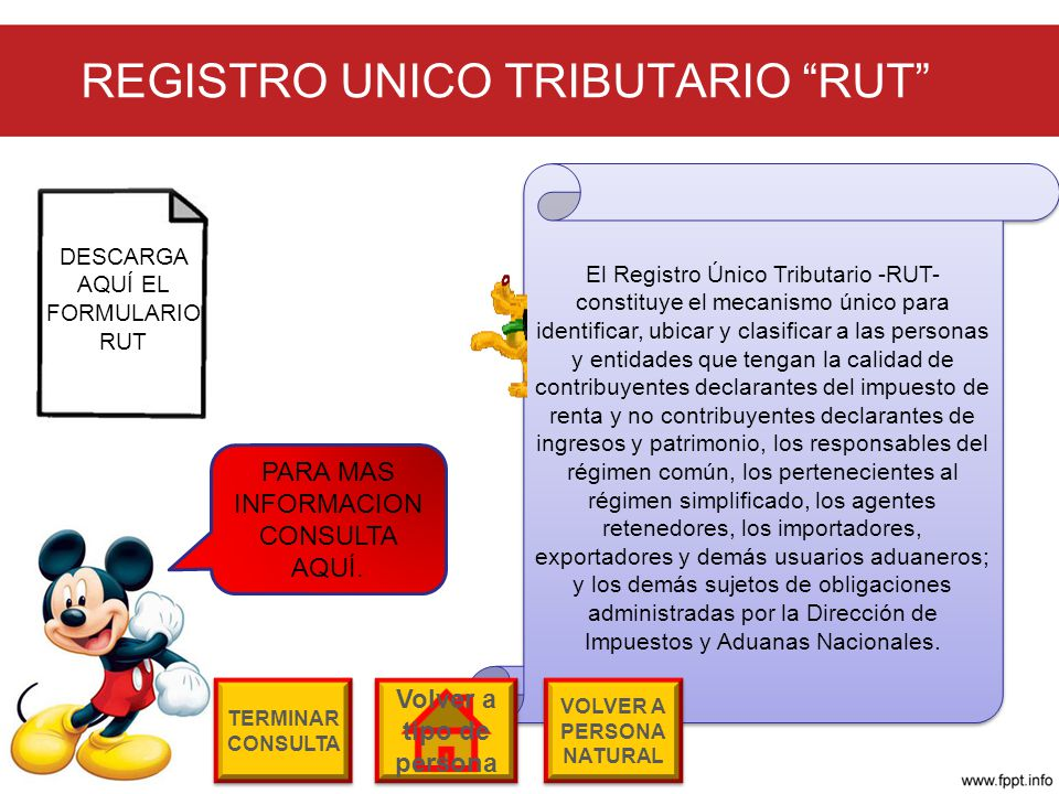 REGISTRO UNICO TRIBUTARIO RUT
