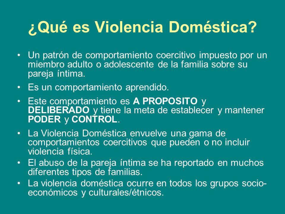 ¿Qué es Violencia Doméstica