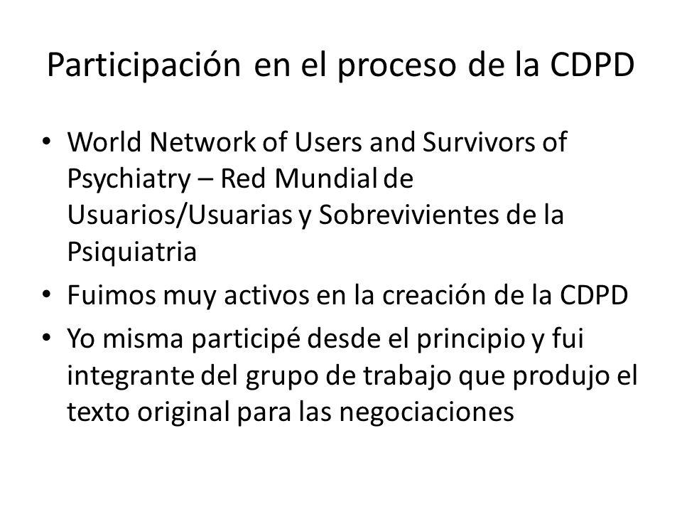 Participación en el proceso de la CDPD