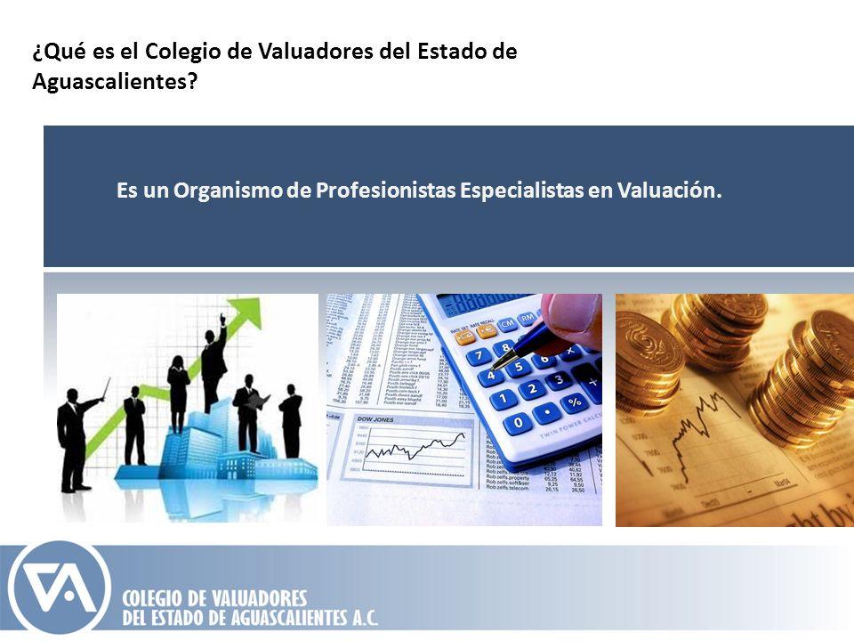 ¿Qué es el Colegio de Valuadores del Estado de Aguascalientes