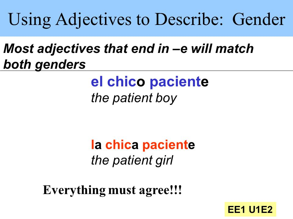 Using Adjectives to Describe: Gender