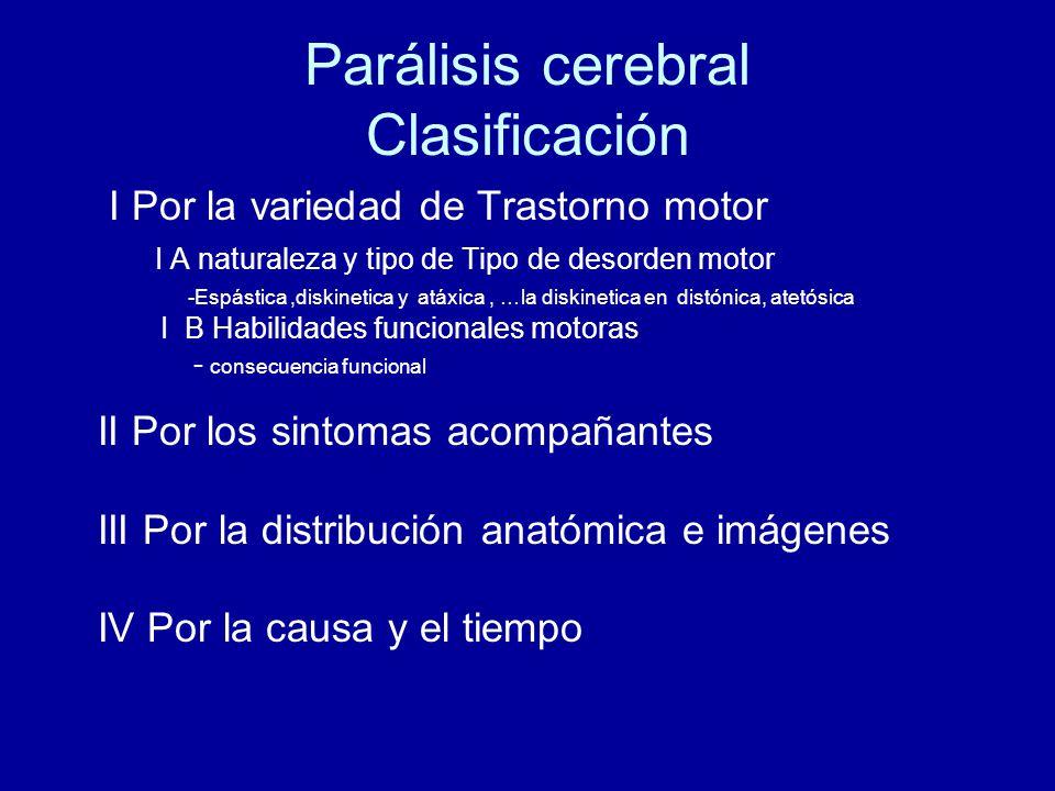 Asombroso Anatomía Parálisis Cerebral Inspiración - Imágenes de ...