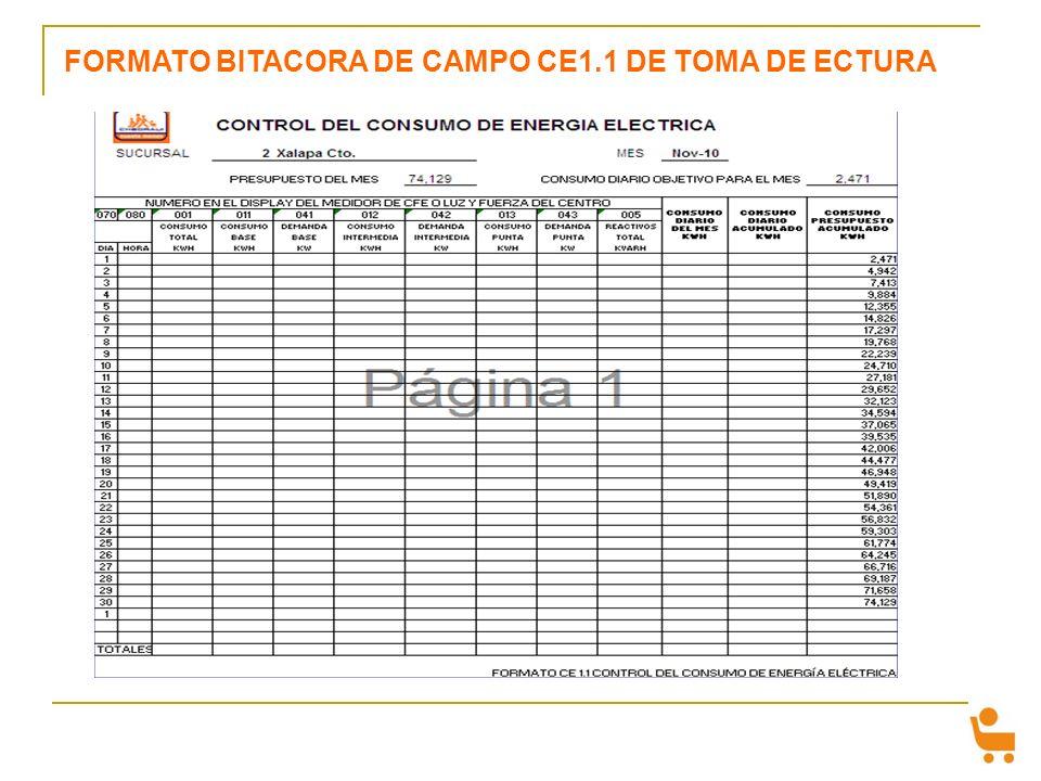 FORMATO BITACORA DE CAMPO CE1.1 DE TOMA DE ECTURA
