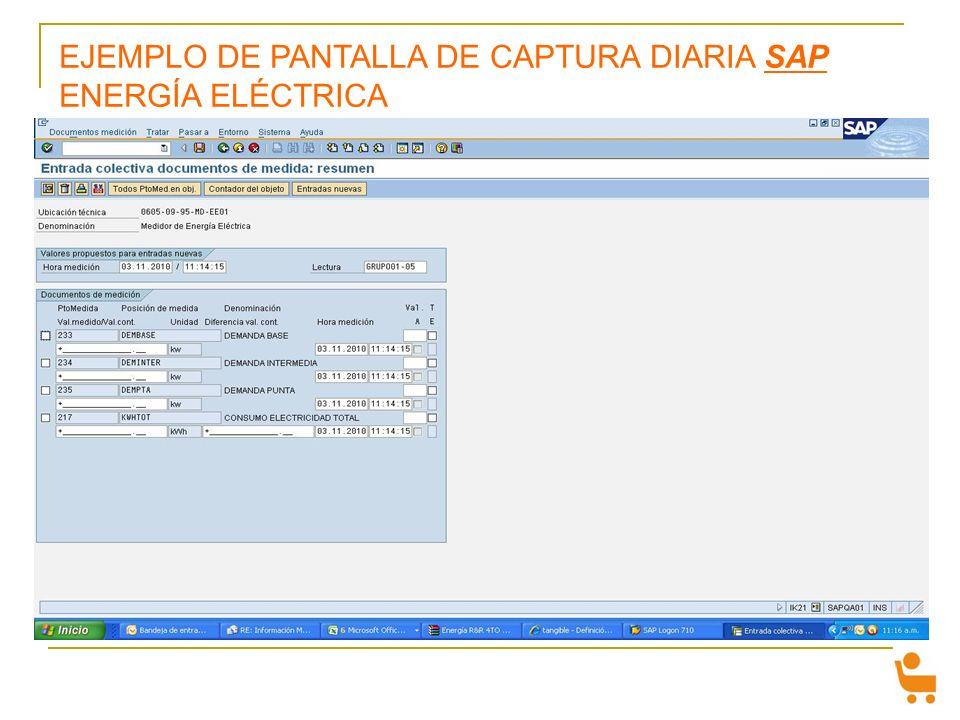 EJEMPLO DE PANTALLA DE CAPTURA DIARIA SAP ENERGÍA ELÉCTRICA