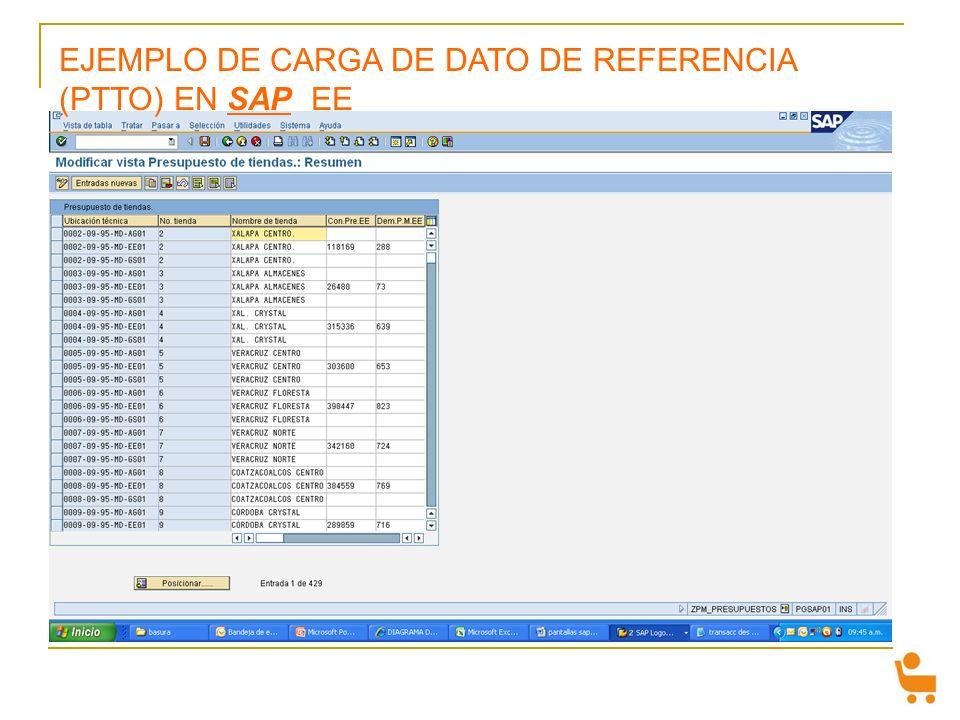 EJEMPLO DE CARGA DE DATO DE REFERENCIA (PTTO) EN SAP EE