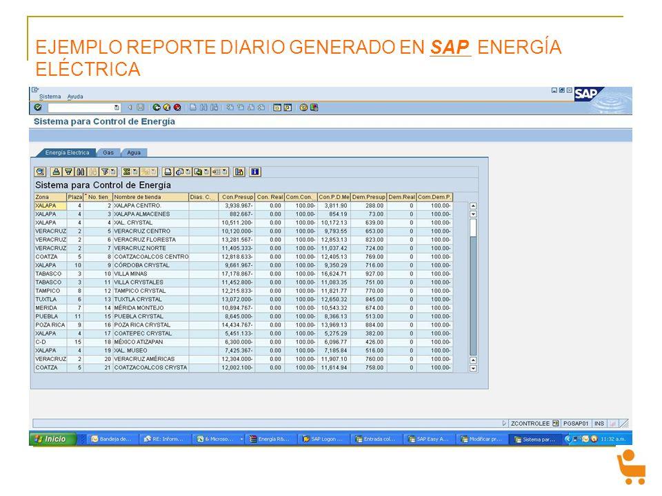 EJEMPLO REPORTE DIARIO GENERADO EN SAP ENERGÍA ELÉCTRICA