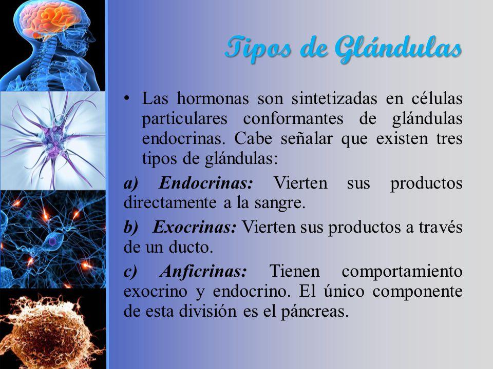 Tipos de Glándulas