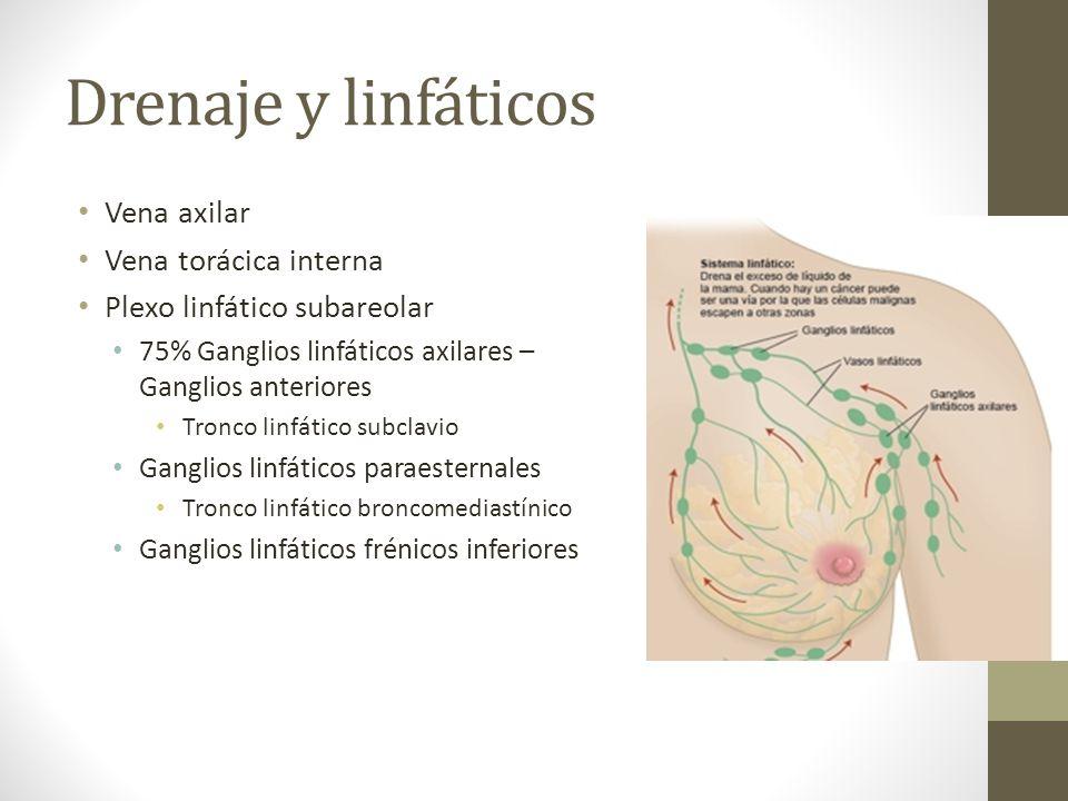 Vistoso Axila Disección De La Anatomía Bandera - Imágenes de ...