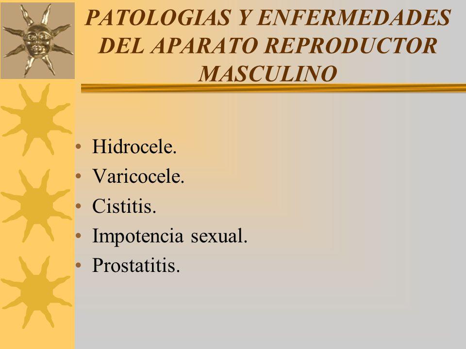 PATOLOGIAS Y ENFERMEDADES DEL APARATO REPRODUCTOR MASCULINO