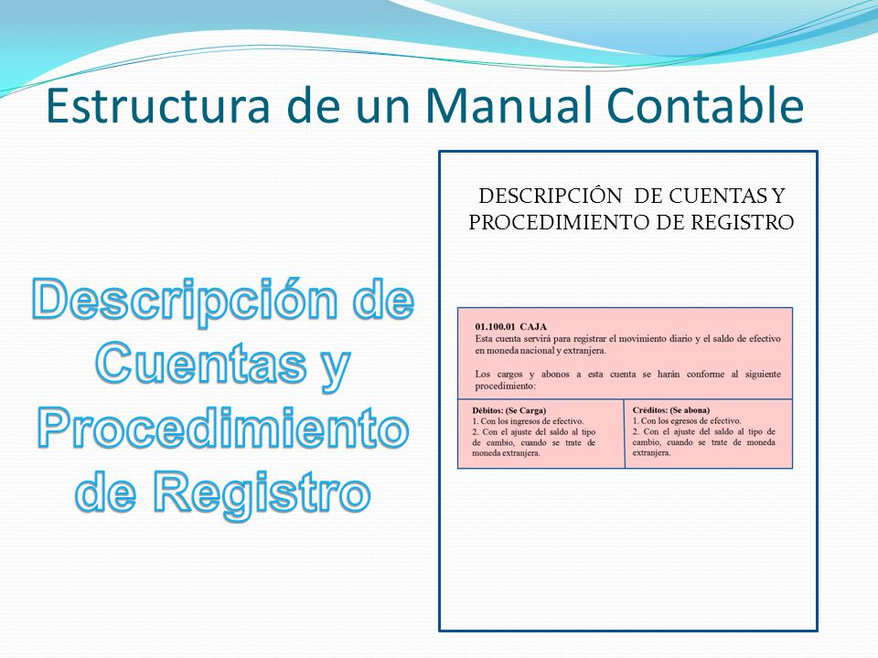 Estructura de un Manual Contable