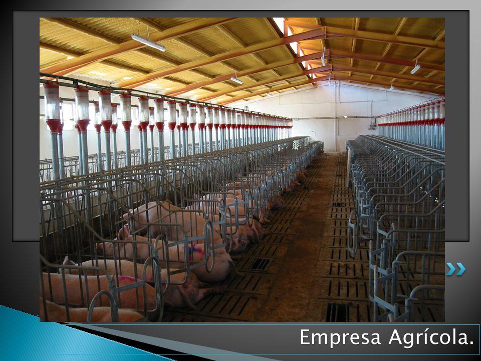 Empresa Agrícola.