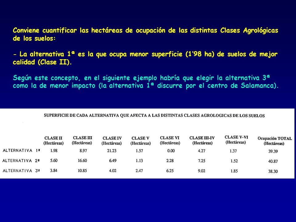Conviene cuantificar las hectáreas de ocupación de las distintas Clases Agrológicas