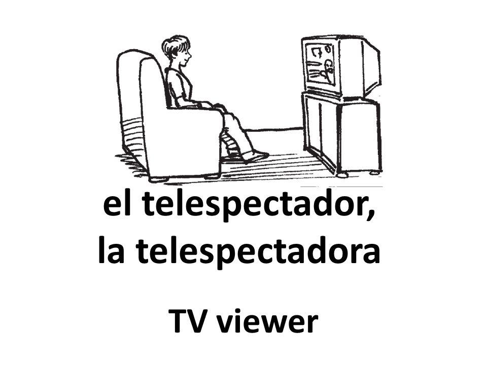 el telespectador, la telespectadora