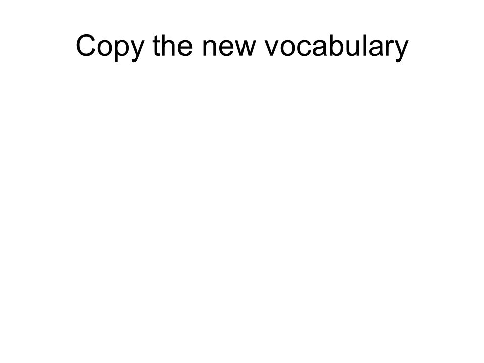Copy the new vocabulary