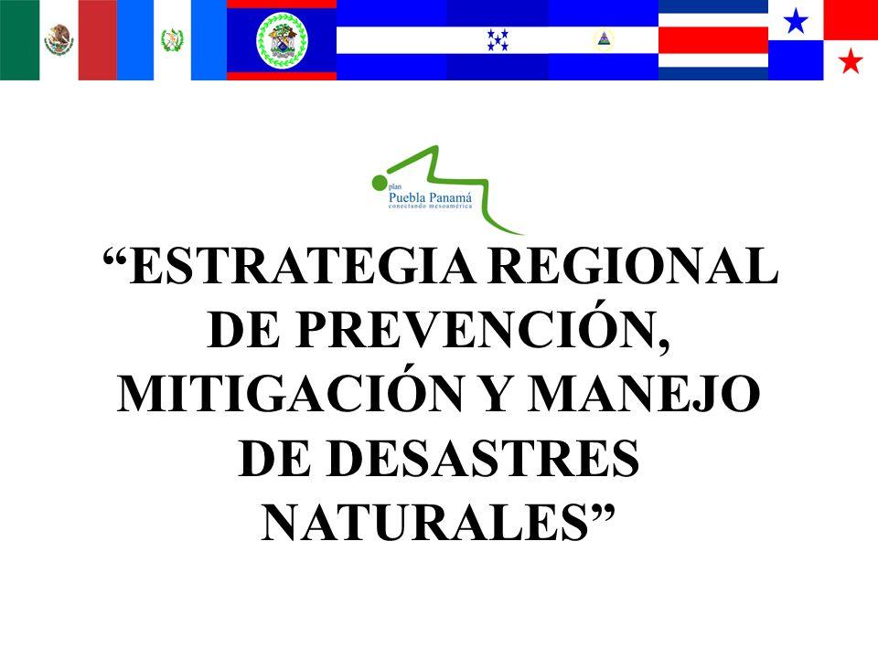 ESTRATEGIA REGIONAL DE PREVENCIÓN, MITIGACIÓN Y MANEJO DE DESASTRES NATURALES