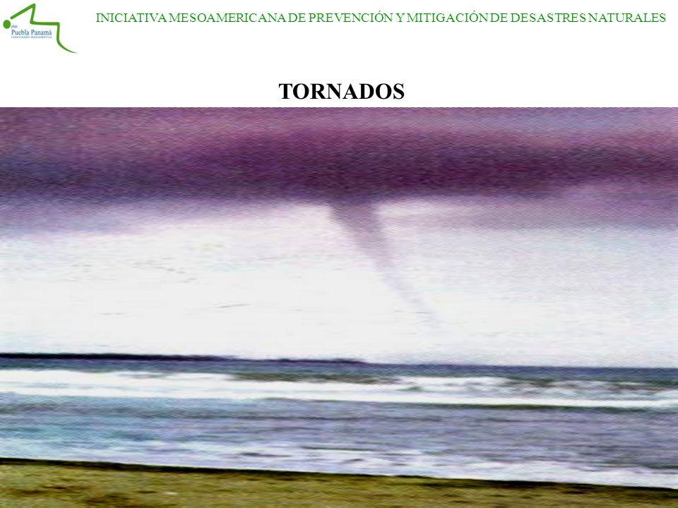 INICIATIVA MESOAMERICANA DE PREVENCIÓN Y MITIGACIÓN DE DESASTRES NATURALES