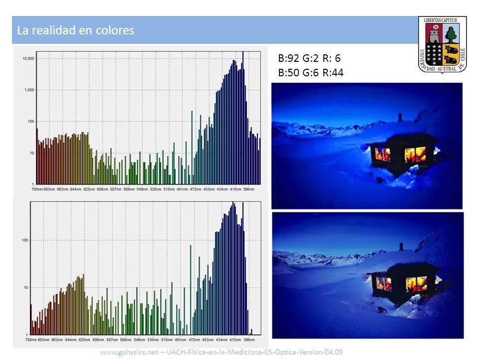 La realidad en colores B:92 G:2 R: 6 B:50 G:6 R:44