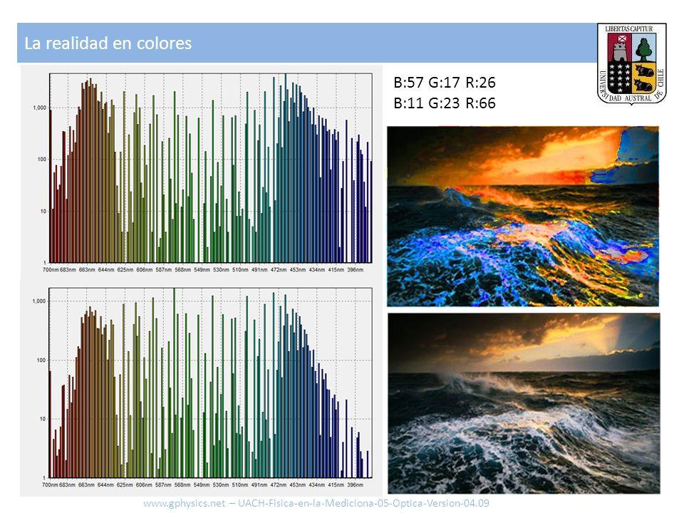 La realidad en colores B:57 G:17 R:26 B:11 G:23 R:66