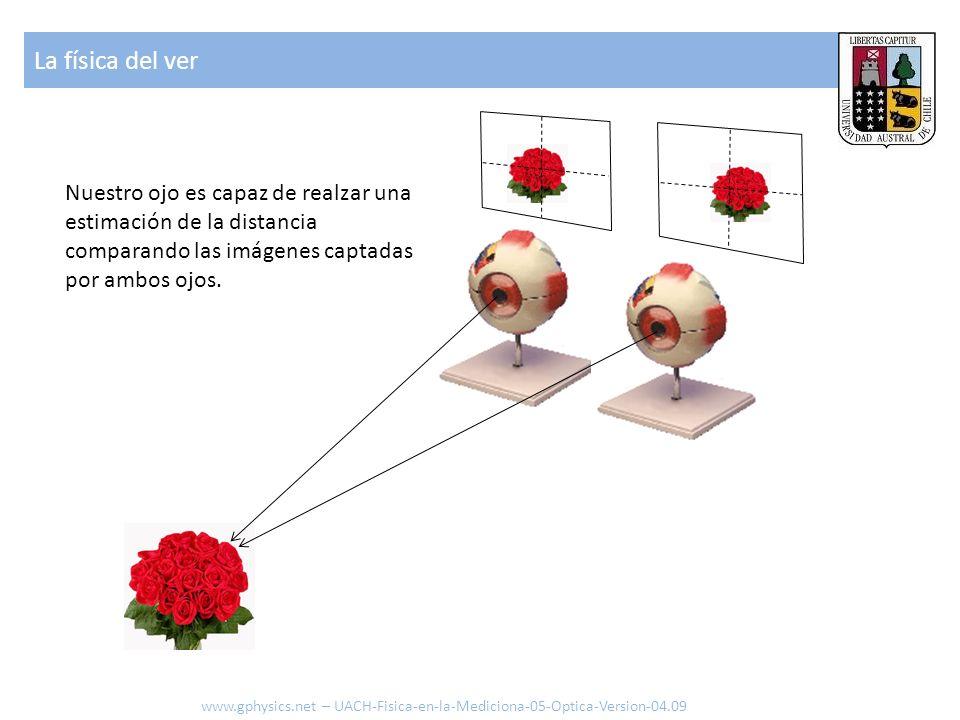 La física del ver Nuestro ojo es capaz de realzar una estimación de la distancia comparando las imágenes captadas por ambos ojos.
