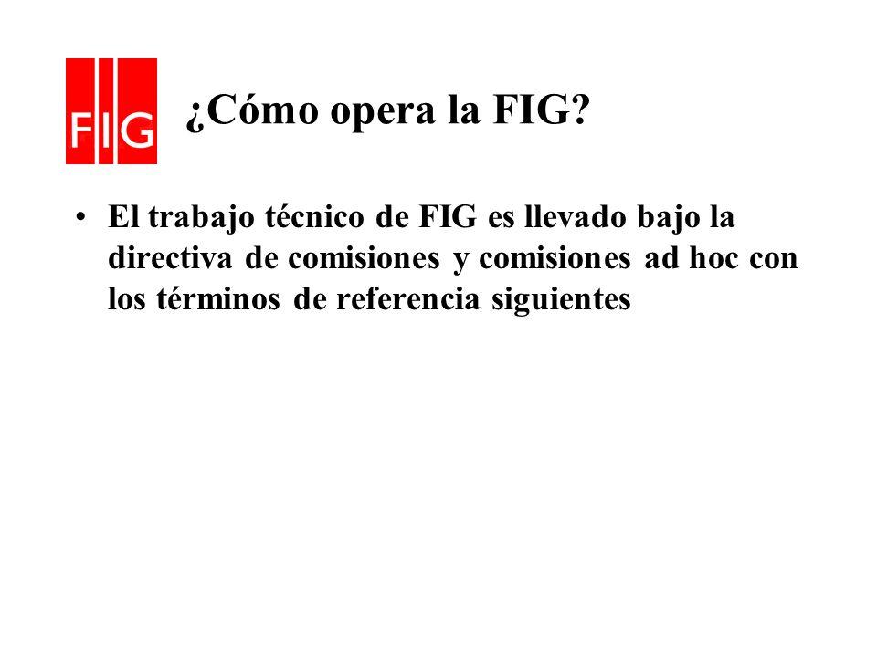 ¿Cómo opera la FIG