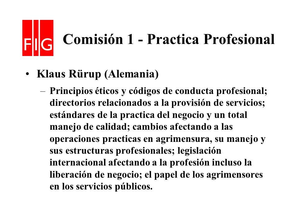 Comisión 1 - Practica Profesional