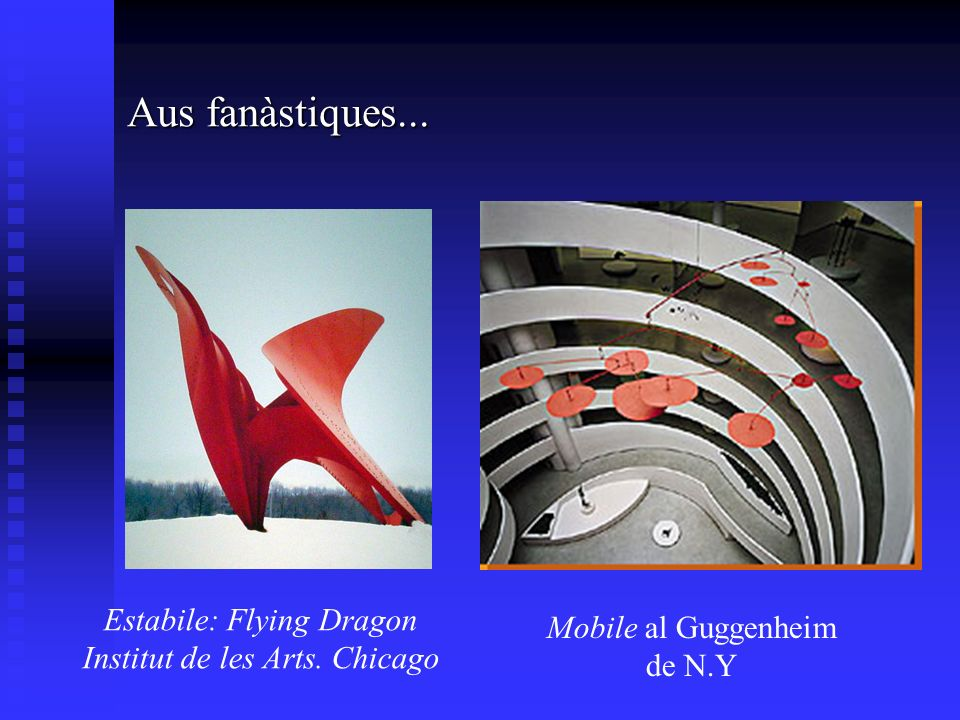 Aus fanàstiques... Estabile: Flying Dragon Institut de les Arts.