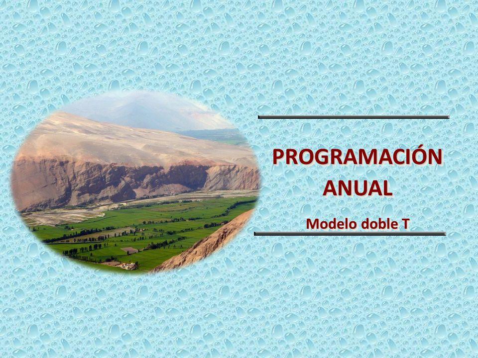 PROGRAMACIÓN ANUAL Modelo doble T 13
