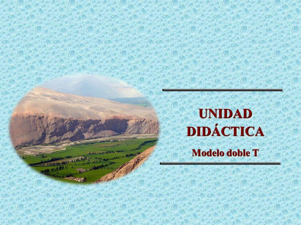 UNIDAD DIDÁCTICA Modelo doble T 21