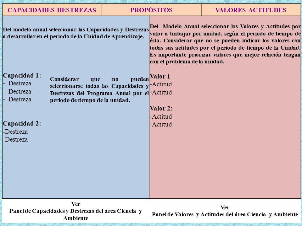 CAPACIDADES-DESTREZAS PROPÓSITOS VALORES-ACTITUDES
