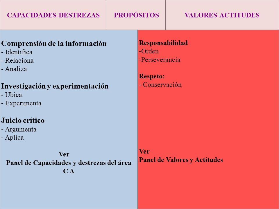 CAPACIDADES-DESTREZAS Panel de Capacidades y destrezas del área C A