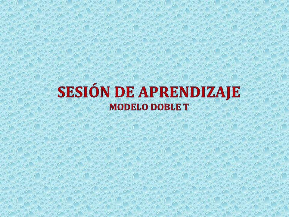 SESIÓN DE APRENDIZAJE Modelo doble T 29
