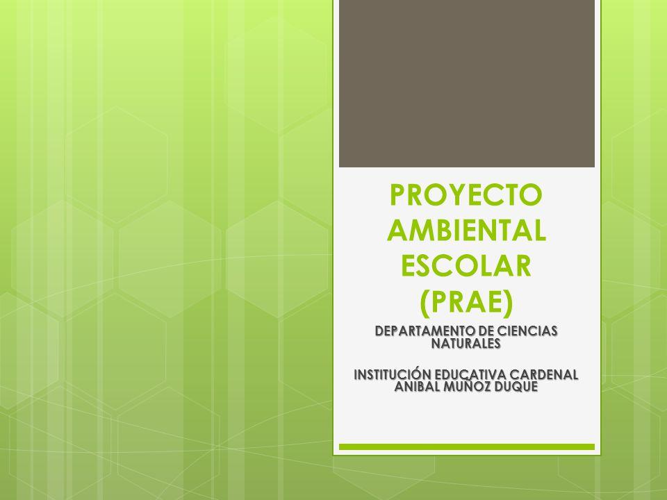 PROYECTO AMBIENTAL ESCOLAR (PRAE)