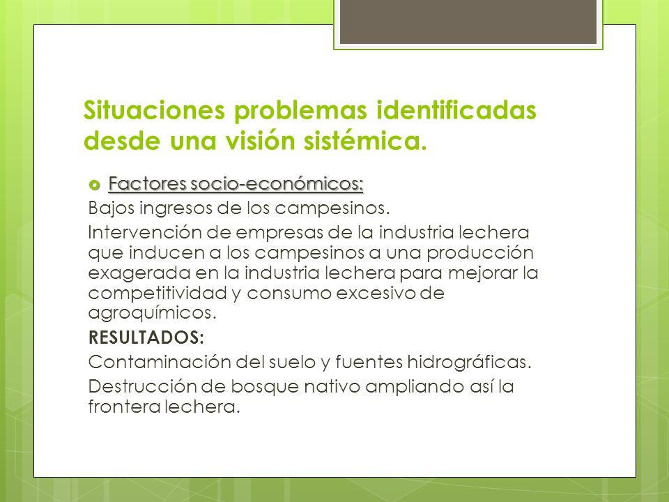 Situaciones problemas identificadas desde una visión sistémica.